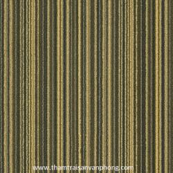 Thảm Tấm C1