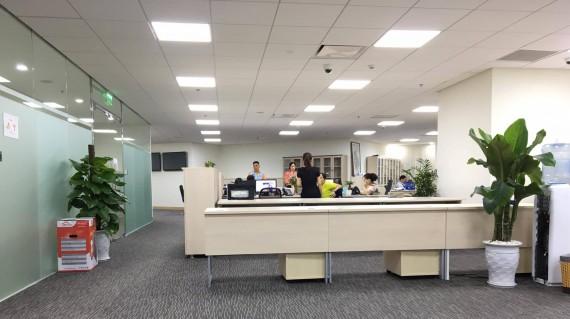Văn phòng 100m2 nên dùng thảm trải sàn loại nào?