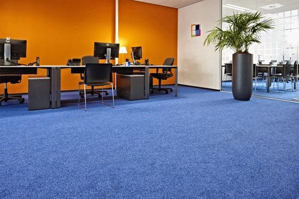 Cách chọn thảm trải sàn văn phòng theo màu sắc